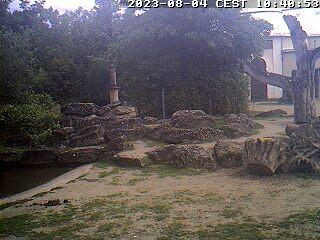 Zoo - Elefanti